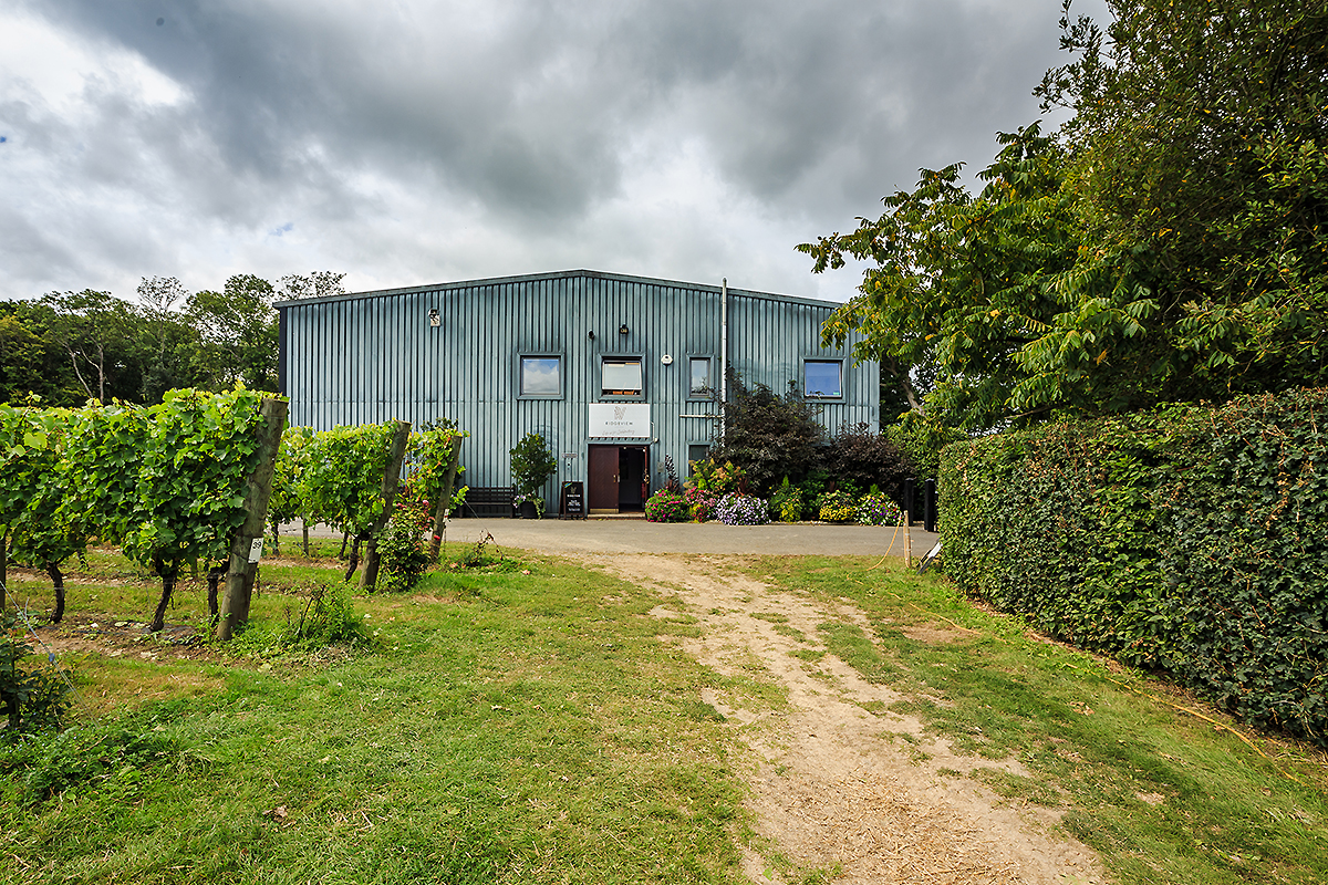Sussex Photographer, Construction Photography, Building Photography, Landscape Photography, Interior Photography, Axio, Ridgeview Wine Estate